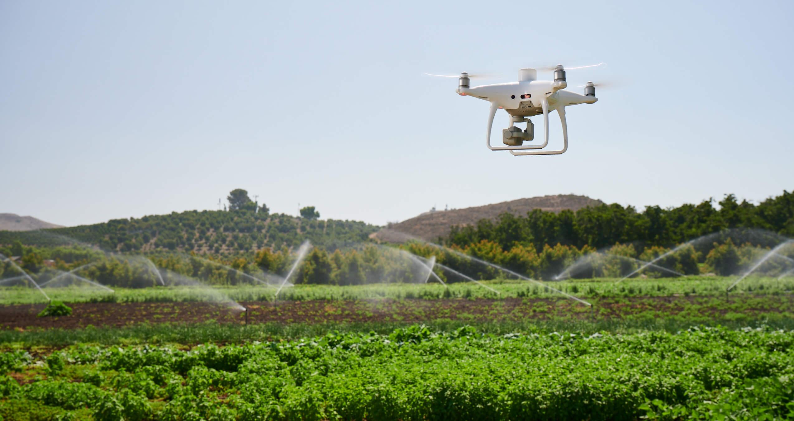 DJI P4M Multispectral for irrigation