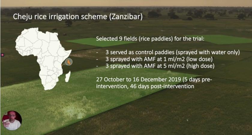 Anti-malaria experimental design slide
