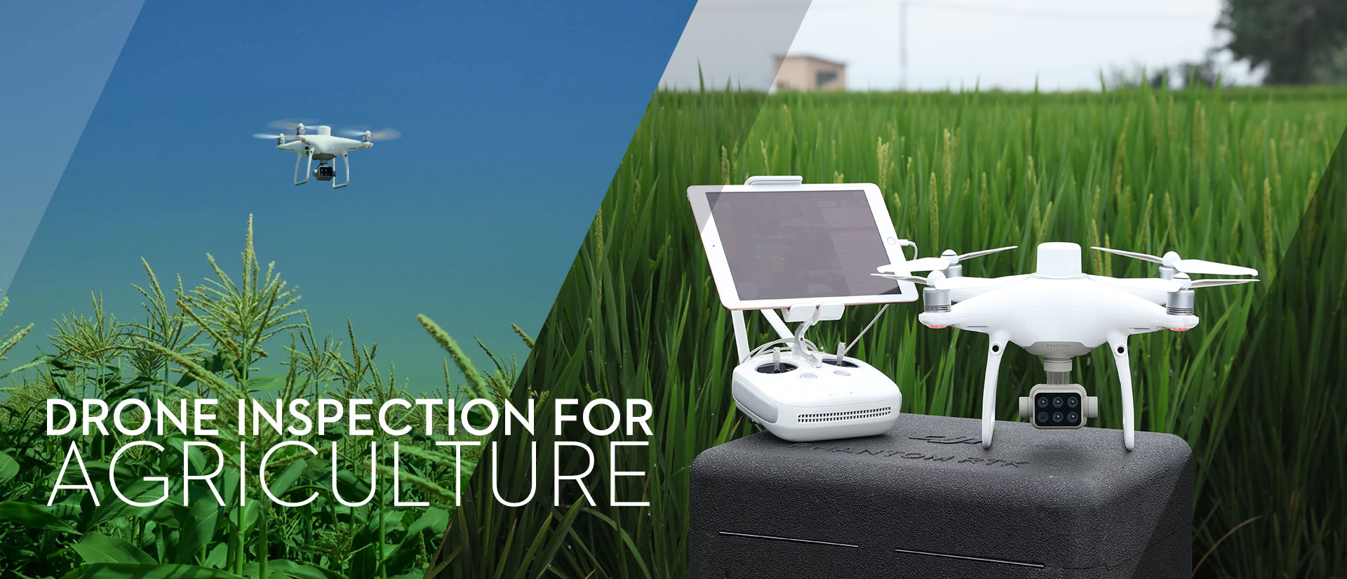 Blog-Drone-Inspection-Agriculture