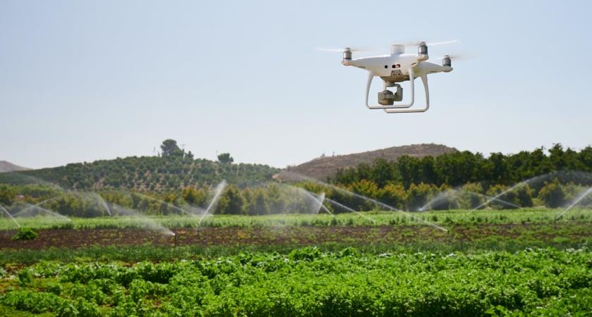 P4 Multispectral irrigation