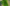 P4 Multispectral for GROUPAMA precision agriculture