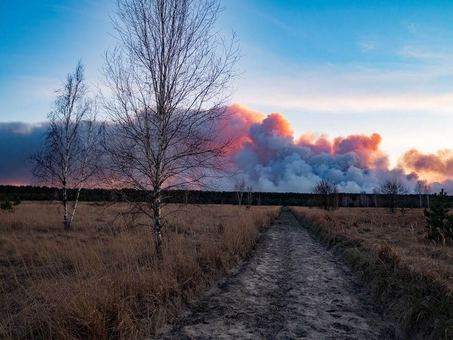 Forest fire in the Chernobyl exclusion zone